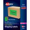 "High-Visibility Shipping Labels, Permanent Adhesive, Assorted Neon Colors, 5 1/2"" x 8 1/2"", 100/BX"
