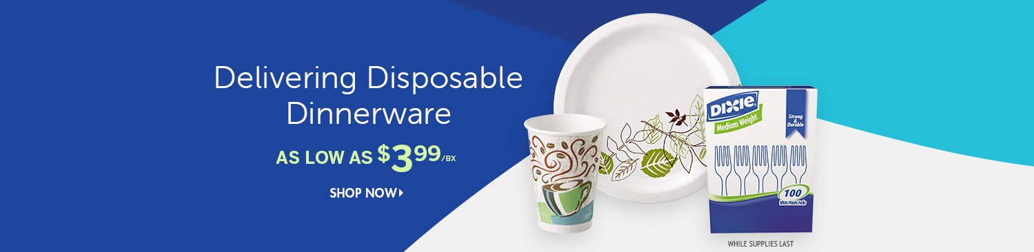 Save on Dixie Disposable Dinnerware