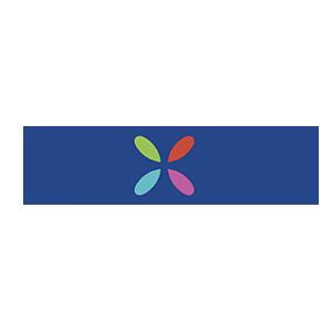 Dixie Logo