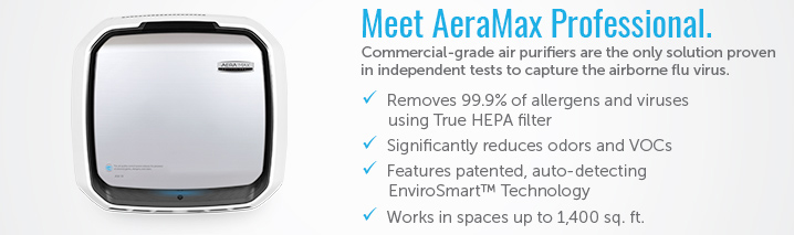 Meet AeraMax Professional Air Purifier
