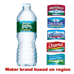 Natural Spring Water, 16.9 oz, 24/CT