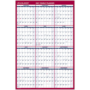 """Erasable Vertical/Horizontal Wall Planner, 24"""" x 36"""", Blue/Red, 2021"""