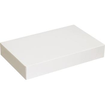 """W.B. Mason Co. Apparel boxes, 19"""" x 12"""" x 3"""", White, 50/CS"""