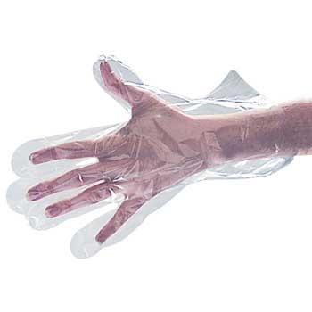 Akers Poly Food Handling Gloves - Large, 500/BX