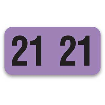 Auto Supplies FileRight™ Number Labels, Ringbook Style, Year 2021, 270/PK
