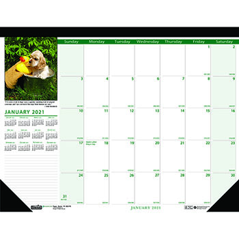 "House of Doolittle™ Recycled Puppies Photographic Monthly Desk Pad Calendar, 18 1/2"" x 13"", 2021"