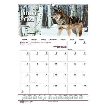 """House of Doolittle™ Recycled Wildlife Scenes Monthly Wall Calendar, 12"""" x 16 1/2"""", 2021"""