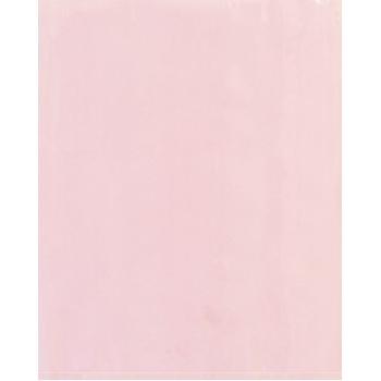 "Anti-Static Flat 4 Mil Poly Bags, 12"" x 18"", Pink, 500/CS"