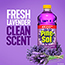 Pine-Sol® All Purpose Cleaner, Lavender Clean®, 48 Ounce Bottle, 8/CT Thumbnail 4