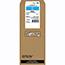 Epson® R02 Ink Cartridge - Cyan - Inkjet - High Yield Thumbnail 1