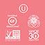 Spindrift® Sparkling Water, Grapefruit, 12 oz., 24/CS Thumbnail 3